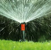 Системы автоматического полива устройство газона цветвы растения