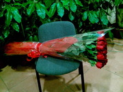 Цветы и растения по невероятным ценам в Астане!