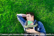 руллоный газон
