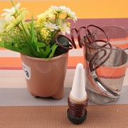Устройство для полива растений без хлопот -2 шт