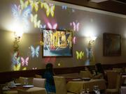 анимация на стену! реклама для кафе,  гостиниц,  кв и тд