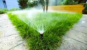 полив растений астана